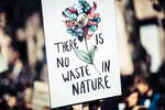 no waste in nature